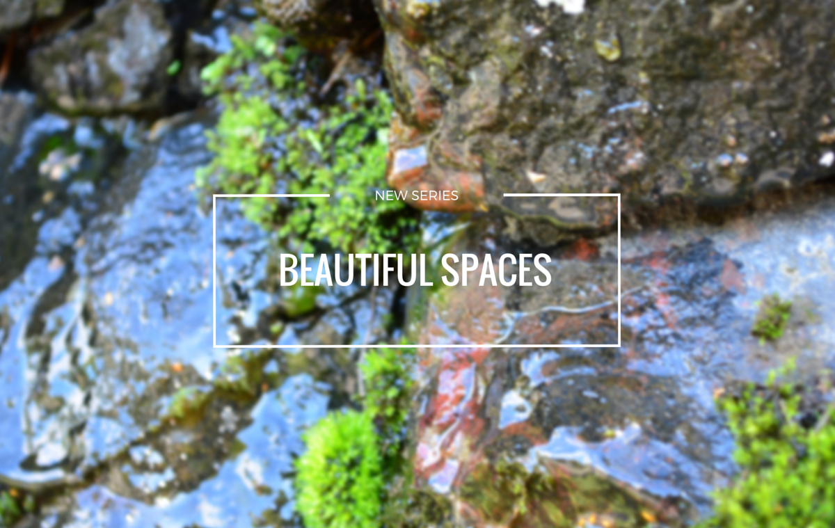 Beautiful Spaces and Lifestyle